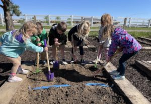 Pre-K Students Helping in the Garden